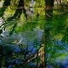 Wimberly Monet
