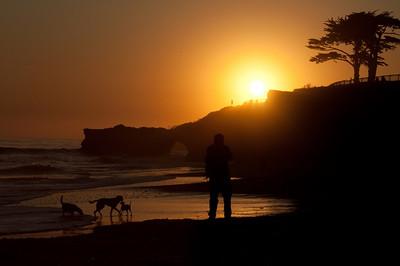 Santa Cruz Sunset - An evening with three dogs