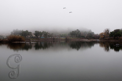 Lake Almaden, San Jose, CA  One Sunday morning, driving by the lake, I saw a thick fog surrounding the lake and I turned back home to get the camera and took this shot.