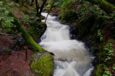 Uvas Canyon County Park,  Water after storm