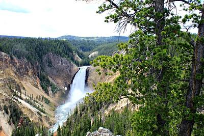 Upper Waterfalls, Yellowstone