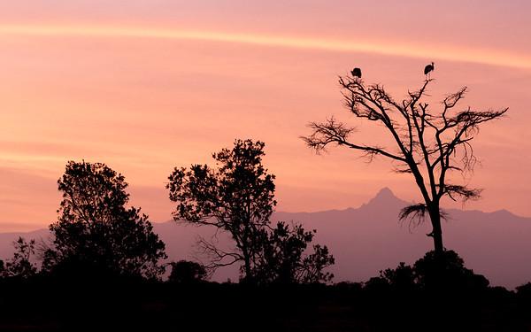 Dennis Stewart - Mount Kenya Sunrise