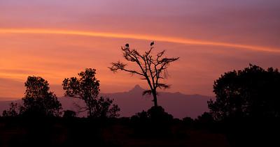 Mount Kenya morning