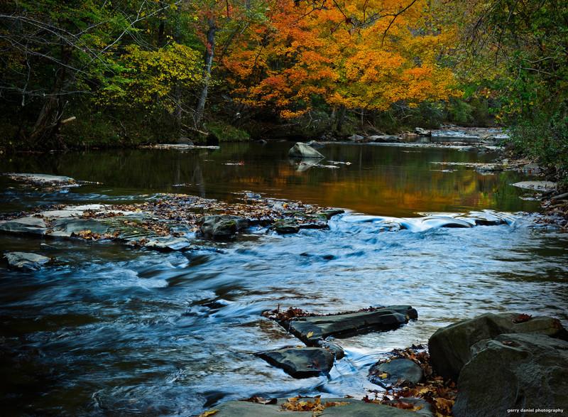 autumn afternoon at Turkey Creek Nature Preserve