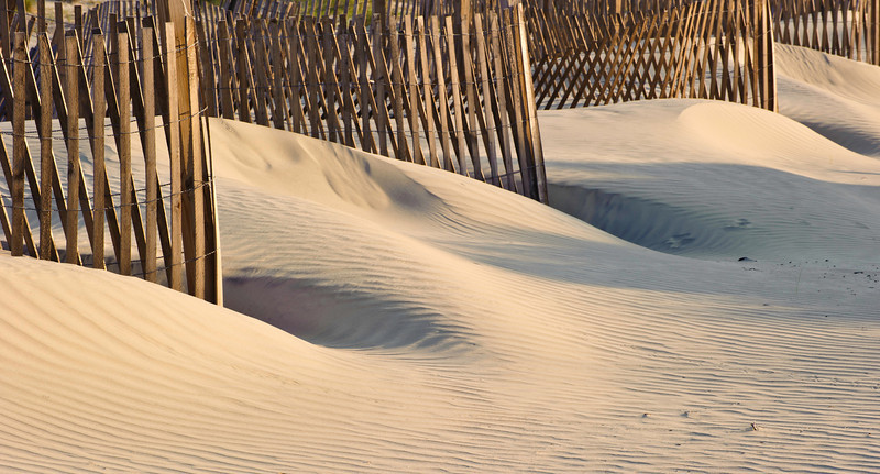 cooked line, sand fences, Seabrook Island, South Carolina