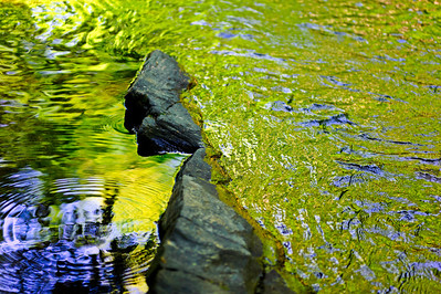 rocks water texture colors, Turkey Creek Nature Preserve, near Pinson, AL
