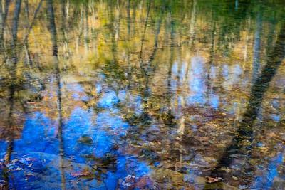 autumn reflection at Turkey Creek Nature Preserve