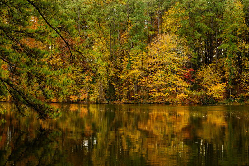 autumn afternoon by the lake in hoover, alabama
