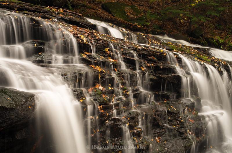 Springfield Falls in Autumn