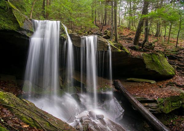 Eckert Falls 8957