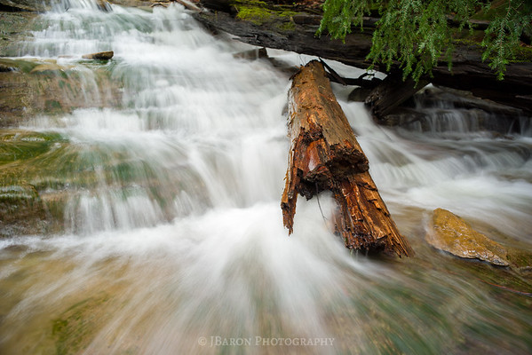 Kildoo Run Flowing past a Log
