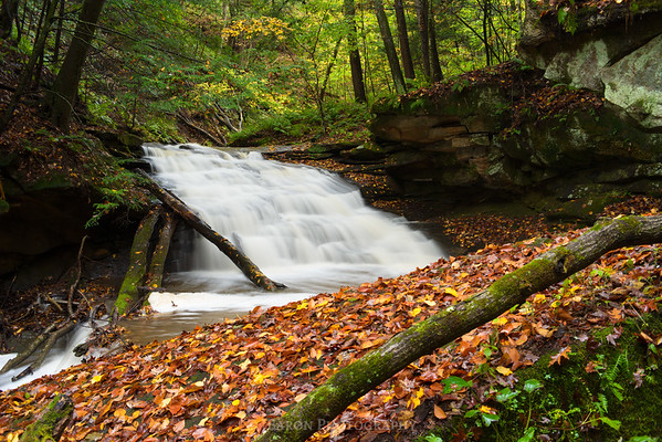 Skunk Run Falls 1825