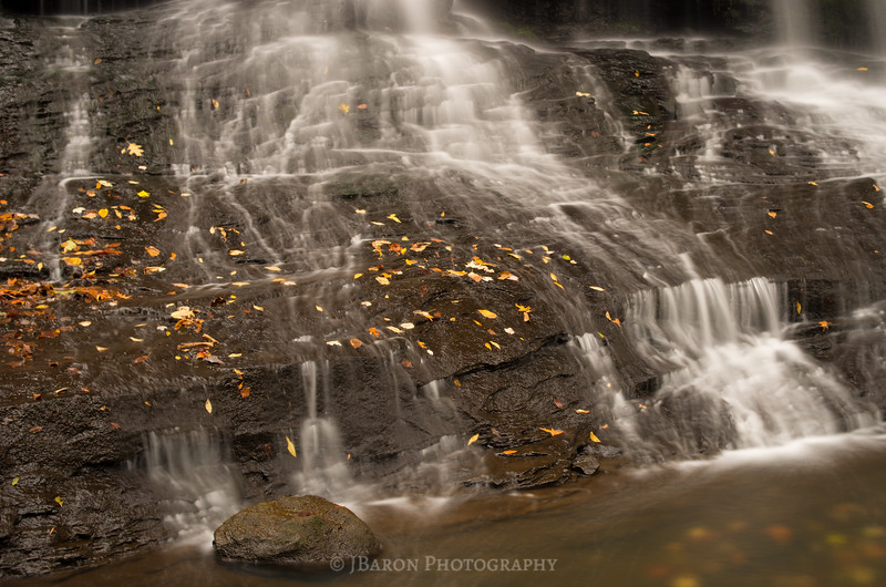 Leaves and Waterfall