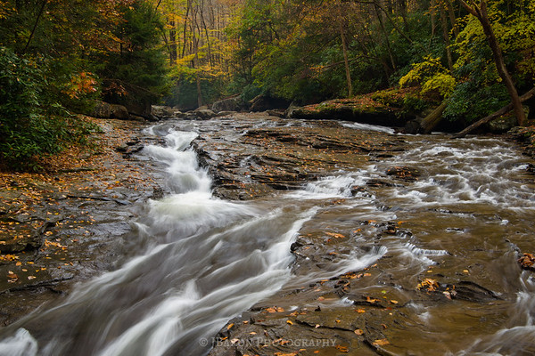 Meadow Run at Ohiopyle 4197