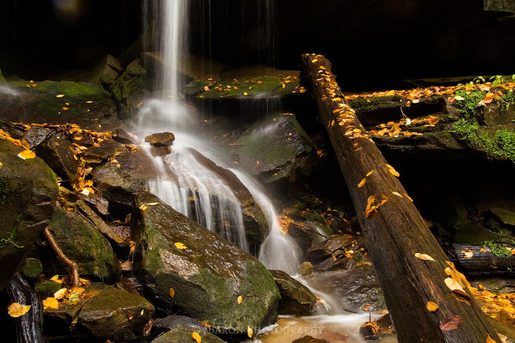 Eckert Falls 1895