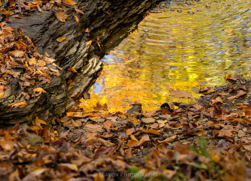 Reflecting Fall to a Point