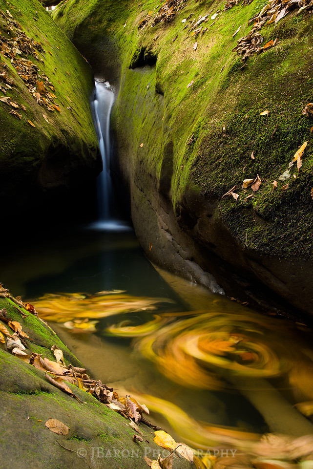 Flowing Water and Leaf Swirls
