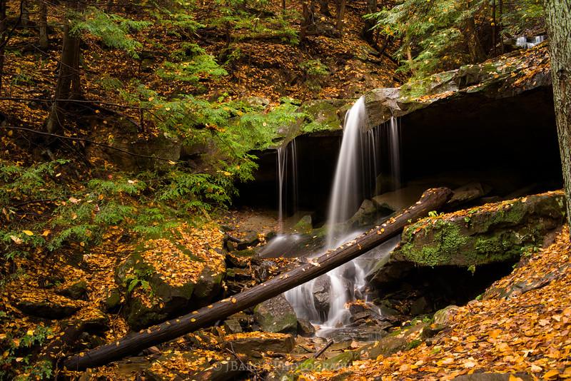 Eckert Falls 1843
