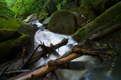 Below Breakneck Falls 0712