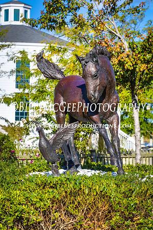 Chincoteague Ponies - 29 Sep 2013