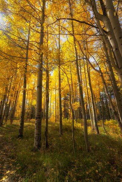 High Mountains Colorado