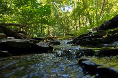Micro Falls at Trillium Trail II