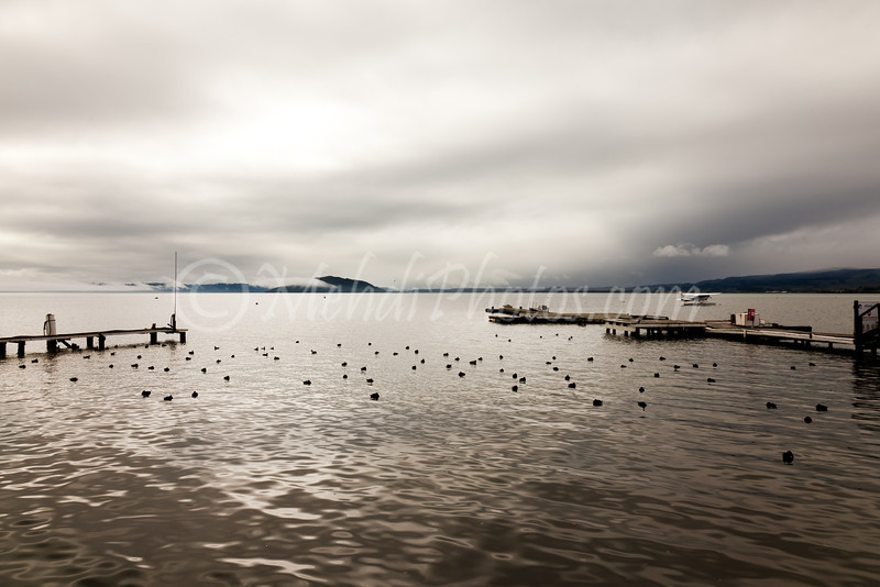 Rotorua Lake, New Zealand, 11 August 2011.