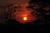 Pantanal sunset.