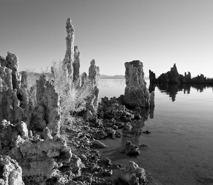 South Tufa, Morning. ©2008, James McGrew