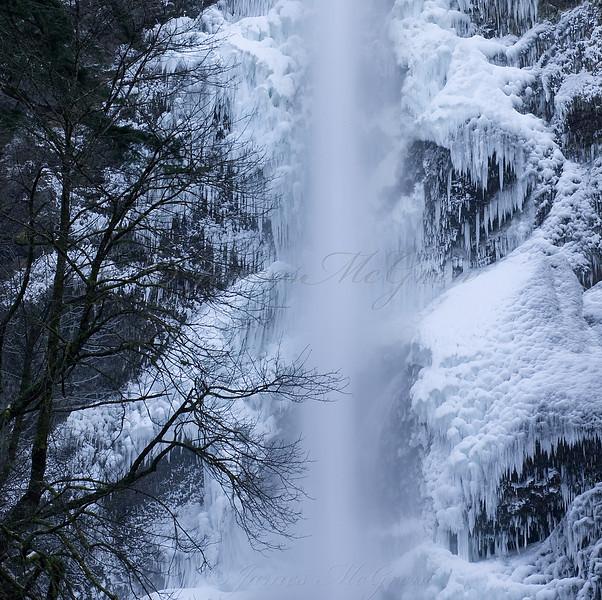 Winter Ice at Multnomah Falls.