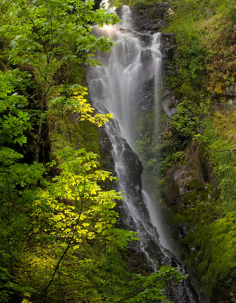 Coopey Falls, Columbia River Gorge.