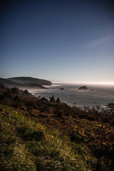 Oregon Coast #14