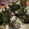 Utah desert landscape