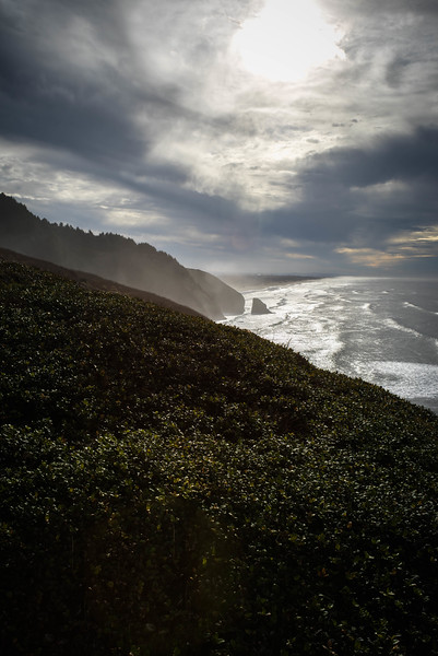 Oregon Coast #12