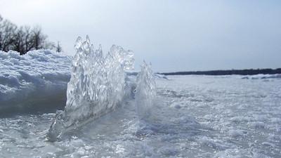 nature's ice sculptures Andrew Haydon Park, Ottawa