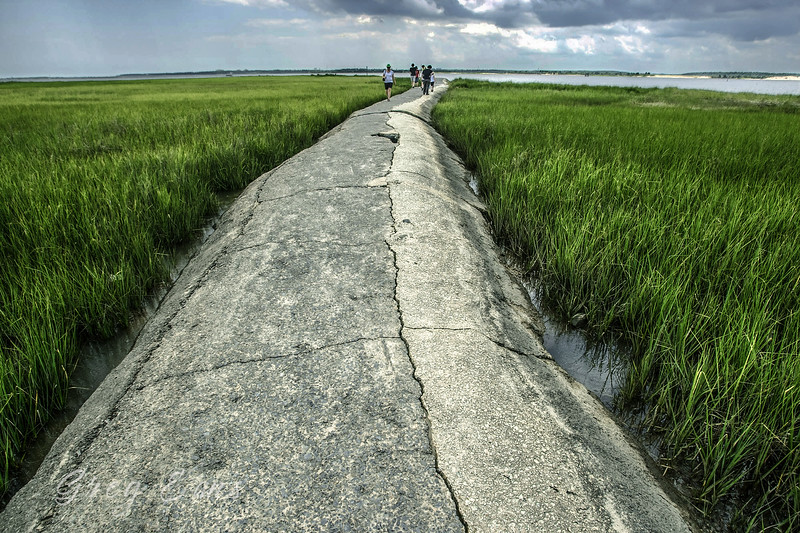 South of Kure Beach, NC, near the Fort Fisher-to-Southport ferry terminal, a rock walkway near the Battery Buchanan Tour Stop leads out in to the Cape Fear river to a small island.  You can walk to the island on the walkway during low tide.