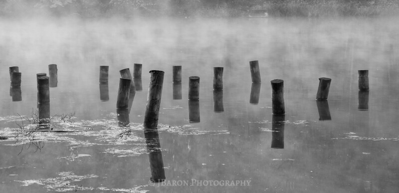 Mist and Wooden Posts