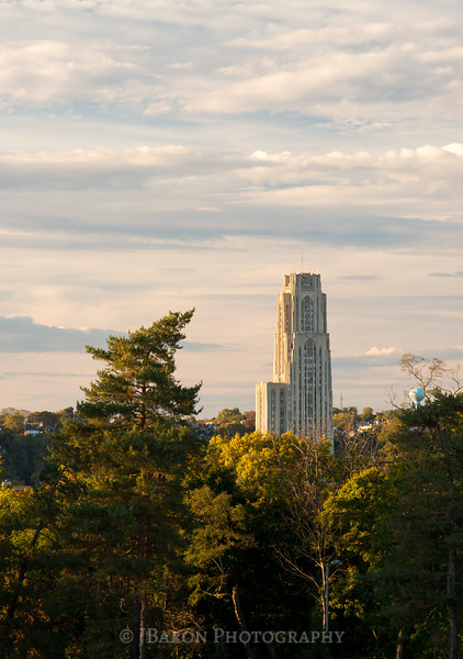 The Cathedral of Learning from Schenley Park