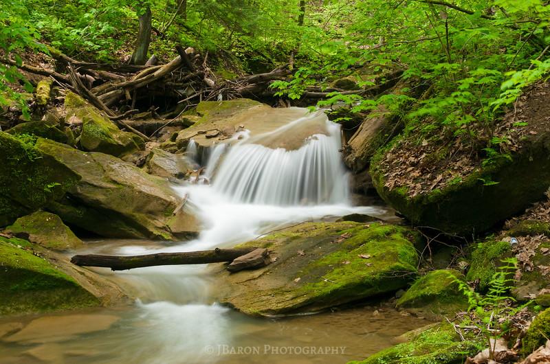 Along Falling Spring Creek