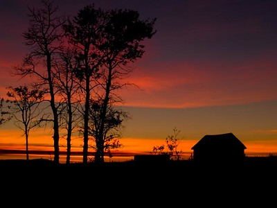 Old Barn Sunset_Rose Hill