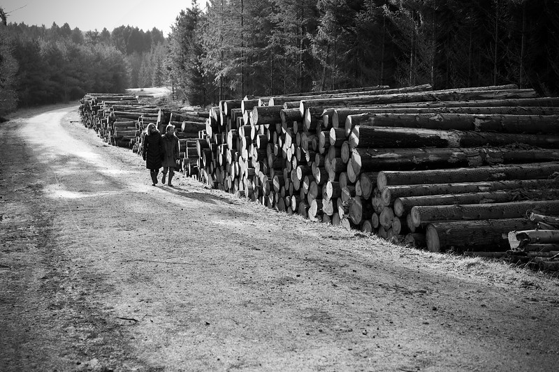 Two People Walking Past Stacked Logs