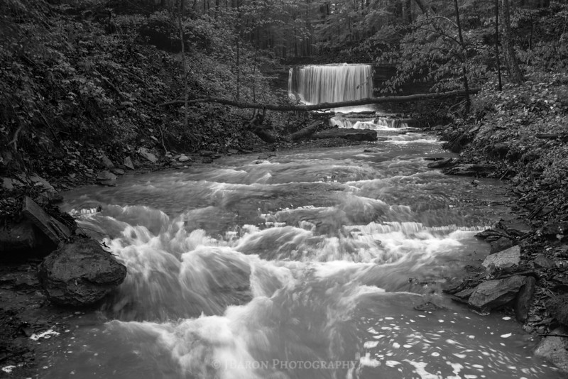 Downstream from Grindstone Falls - Monochrome