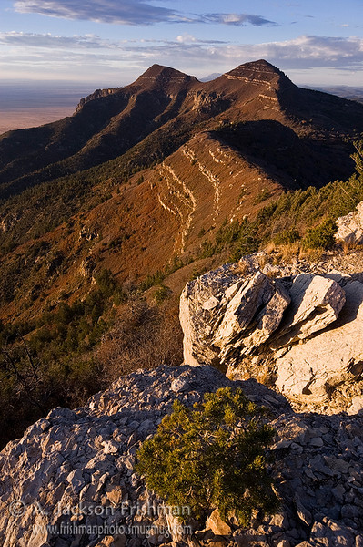 Late fall evening in New Mexico's Manzano Mountains Wilderness, October 2009.