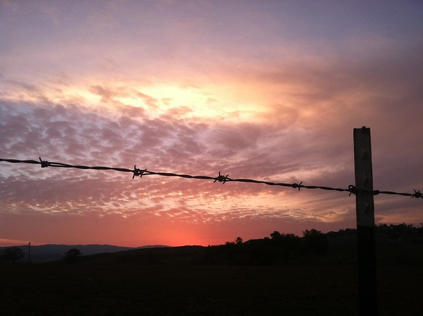 """Barbed Wire Sunset"""