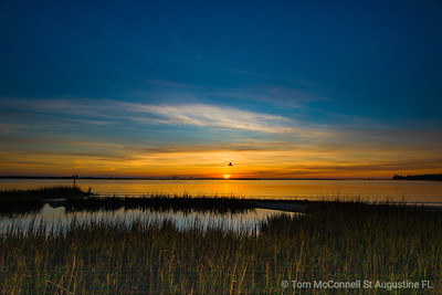 Sunrise, Moultrie Creek, St. Augustine Florida