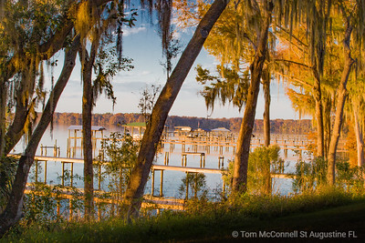 Docks and Spanish Moss, St. Johns River, St. Johns County, Florida