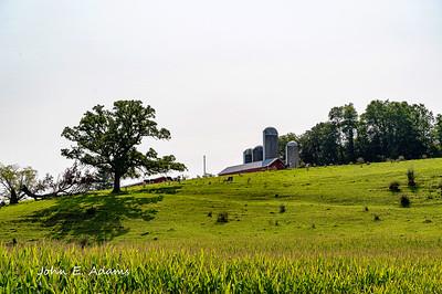 Dane County Farm