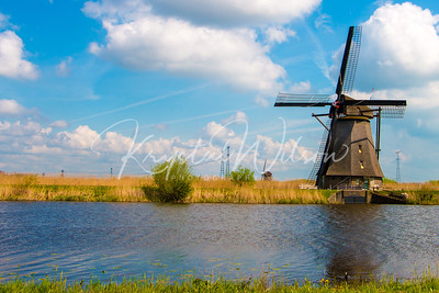 Windmill Fever