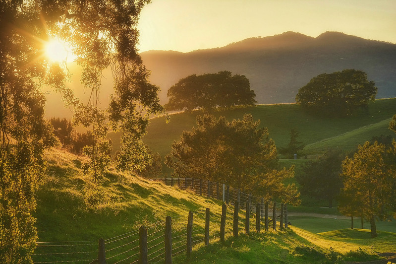 California Sundown
