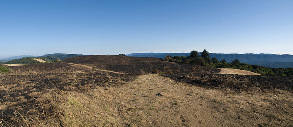 View south from Borel Hill, after burn.
